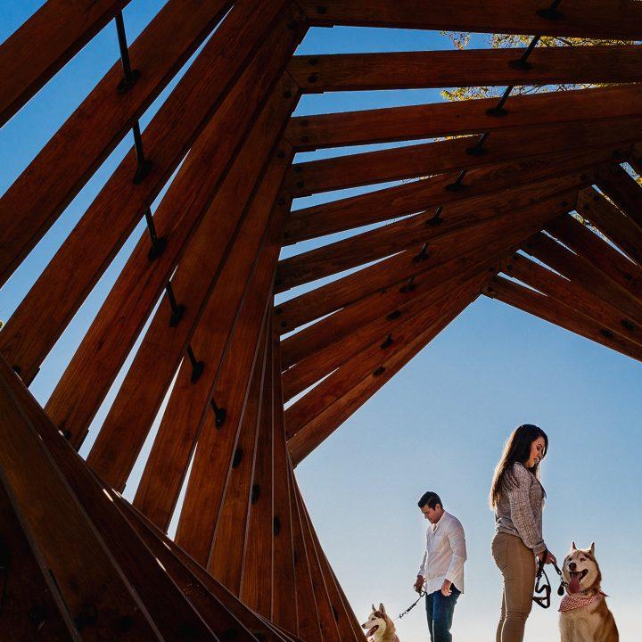 Preboda A&P / Serata Jardín Contemporáneo